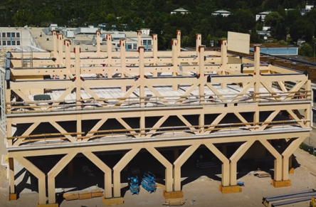 Wooden support structure King Willem I College
