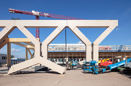 Timber structures placed at King Willem I College
